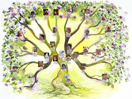 arbre g?alogique constellations familiales Hellinger liens de famille ancetres